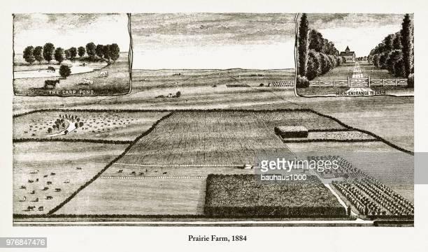 Prairie Farm, Early American Engraving, 1884