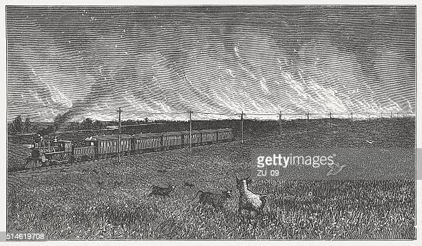 prairie fire in the wild west, wood engarving, published in 1880 - savannah stock illustrations, clip art, cartoons, & icons