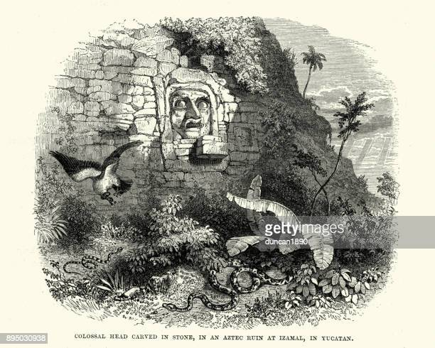 Pre-Columbian stucco head, Izamal, Yucatan 19th Century