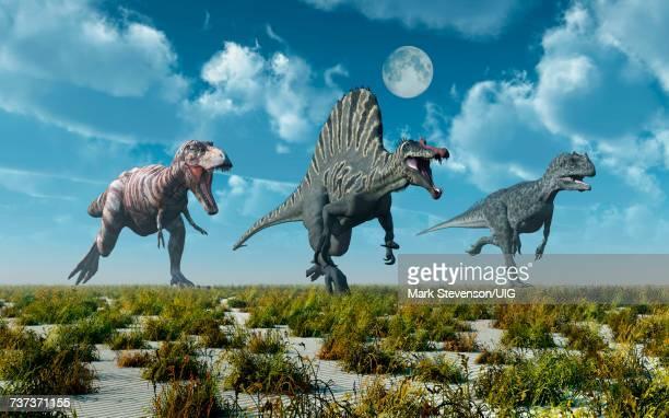 3 Predatory Dinosaurs, T.Rex, Spinosaurus & Allosaurus Dinosaurs.