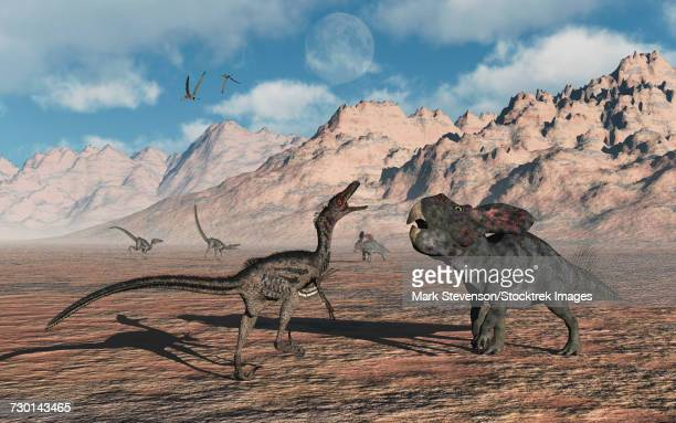 a predatory velociraptor stalking a pair of protoceratops. - dromaeosauridae stock illustrations