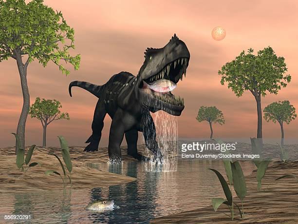 Prestosuchus dinosaur fishing amongst glossopteris tree by sunset.