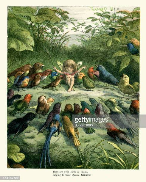 princess nobody and the birds - mockingbird stock illustrations, clip art, cartoons, & icons