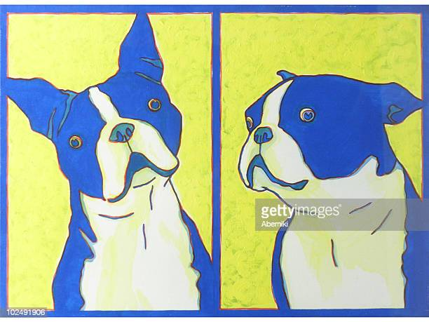 ilustraciones, imágenes clip art, dibujos animados e iconos de stock de a print of two boston terriers - dos animales