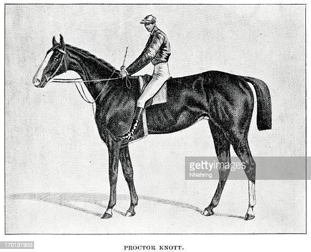 プロクターノット race horse の彫りこみ文字 - named animal点のイラスト素材/クリップアート素材/マンガ素材/アイコン素材