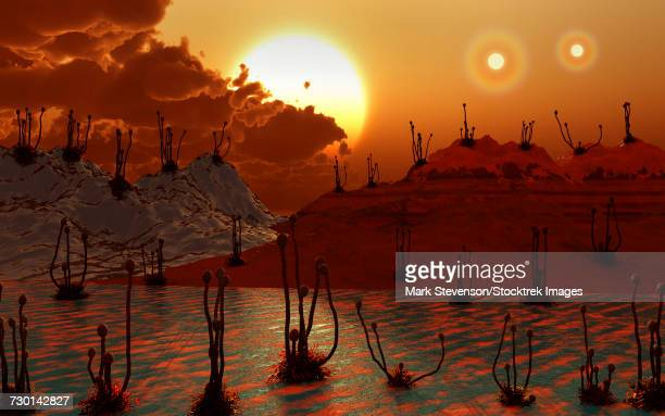 Proxima b planet orbiting the Proxima Centauri red dwarf star.