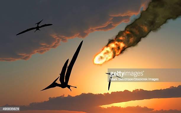 ilustraciones, imágenes clip art, dibujos animados e iconos de stock de pteranodons in flight, unaware of the danger that a crashing asteroid is about to bring. - animal extinto