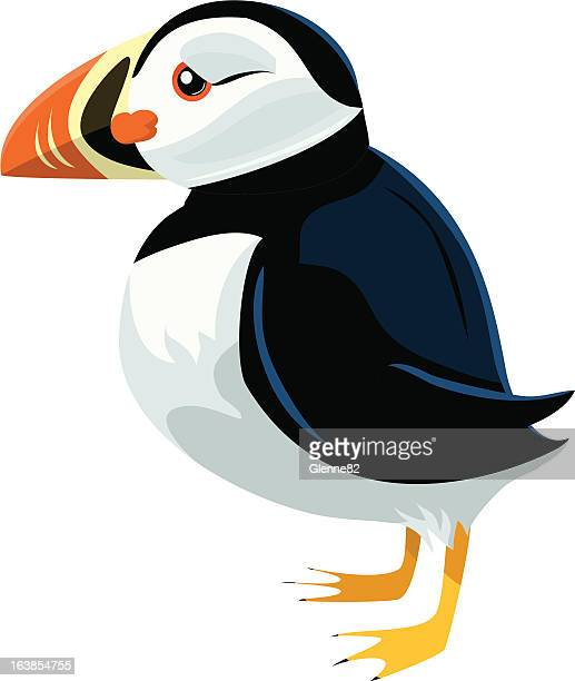 puffin - webbed foot stock illustrations, clip art, cartoons, & icons