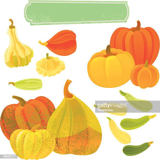 pumpkins and squashes - marrom stock illustrations