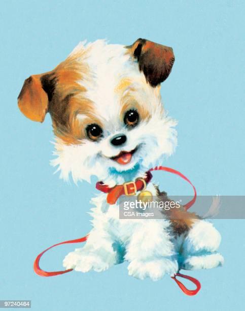 ilustraciones, imágenes clip art, dibujos animados e iconos de stock de puppy - parte del cuerpo animal