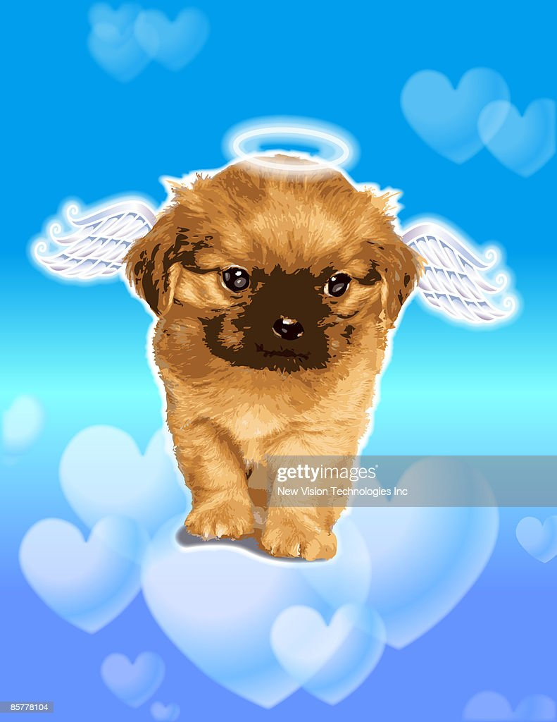 Puppy with wings and halo : stock illustration