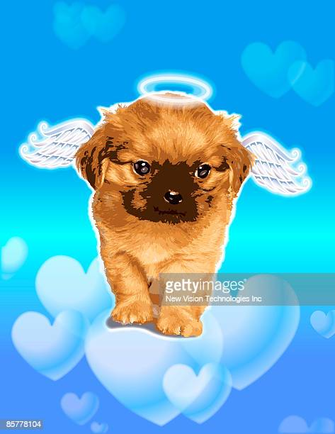 puppy with wings and halo - animal limb stock illustrations, clip art, cartoons, & icons