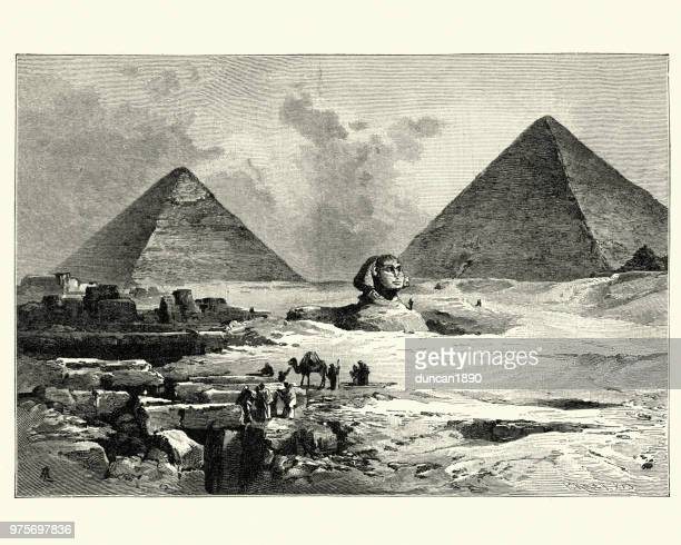 pyramids and great sphinx of giza, 19th century - the sphinx stock illustrations, clip art, cartoons, & icons