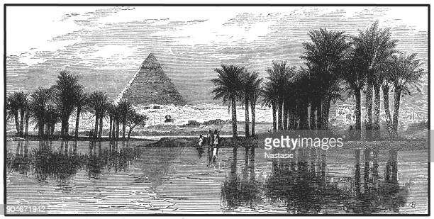 pyramids of giza during a nile flooding - nile river stock illustrations, clip art, cartoons, & icons