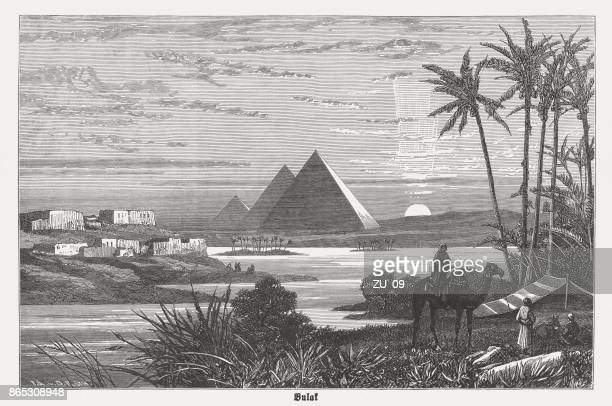 pyramids of giza during a nile flooding, published in 1882 - nile river stock illustrations, clip art, cartoons, & icons