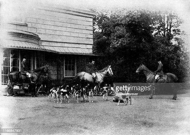 quorn hunt dog pack at quorn hall in quorn, leicestershire, england - 19th century - pack of dogs stock illustrations