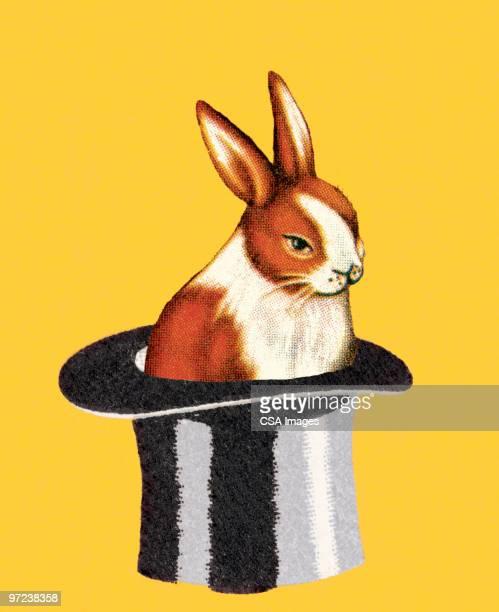 rabbit in a magician's hat - シルクハット点のイラスト素材/クリップアート素材/マンガ素材/アイコン素材