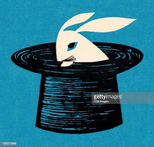 rabbit in magician's hat - magician stock illustrations, clip art, cartoons, & icons