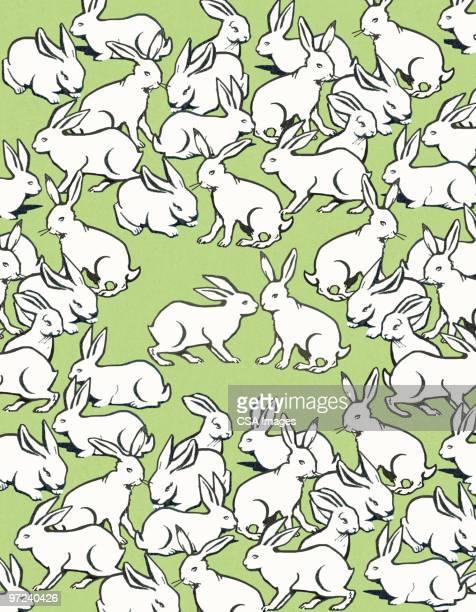 rabbits - vertical stock illustrations