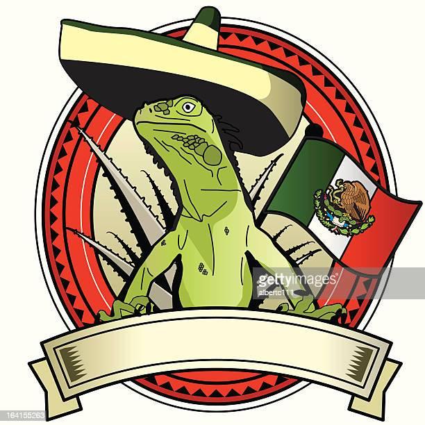 ilustraciones, imágenes clip art, dibujos animados e iconos de stock de reptil raboulrousing - iguana