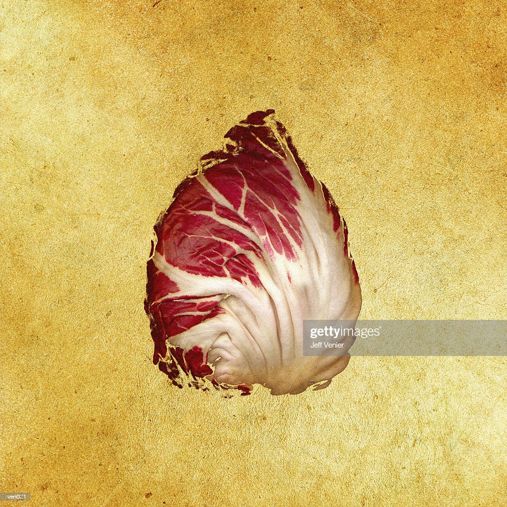 Radicchio Leaf : Stock Illustration