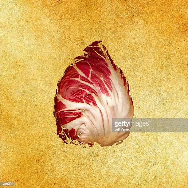 radicchio leaf - chicory stock illustrations, clip art, cartoons, & icons