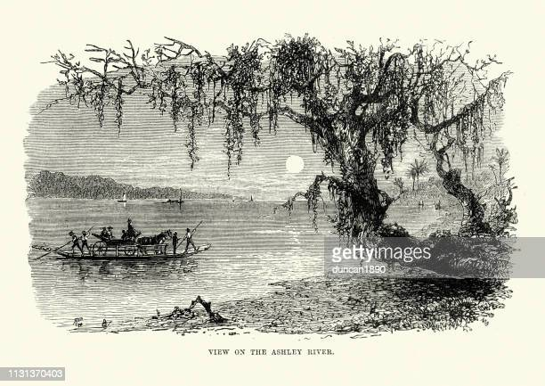 Raft ferry on the Ashley River, South Carolina, 19th Century
