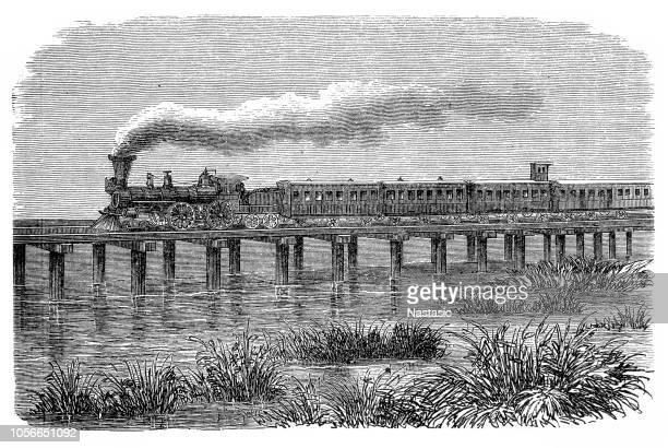 railroad: train on a pole bridge in south carolina - 19th century stock illustrations