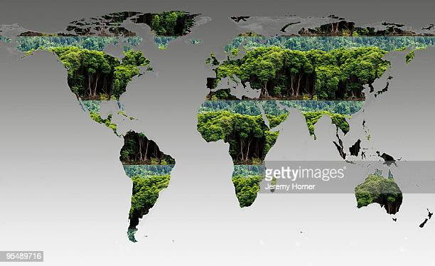 rainforst global map - digital composite stock illustrations