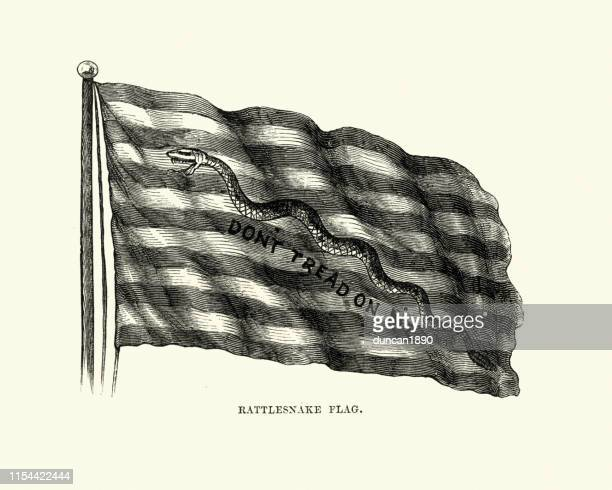 rattlesnake flag, dont tred on me, first navy jack - graphic print stock illustrations