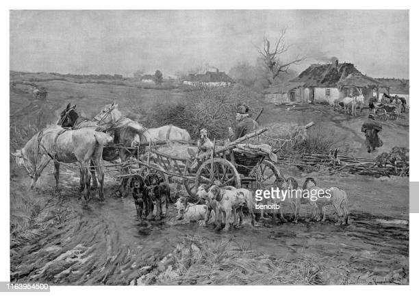 ready for the boar hunt - hunting dog stock illustrations