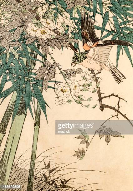 red bird in bamboo, a 19th century japanese woodblock print - japanese culture stock illustrations