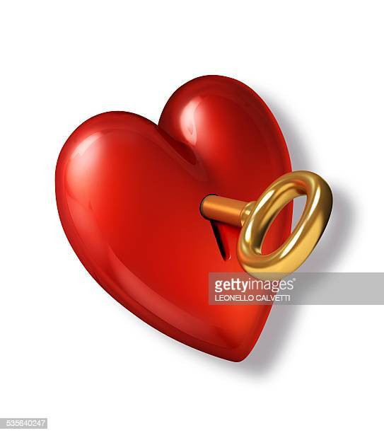 red heart shape with a gold key, artwork - lock stock illustrations