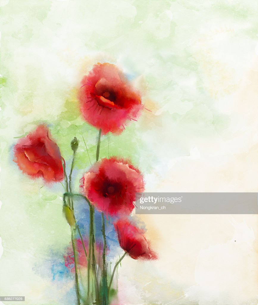 Red Poppy Flowers Watercolor Painting Stock Illustration Getty Images