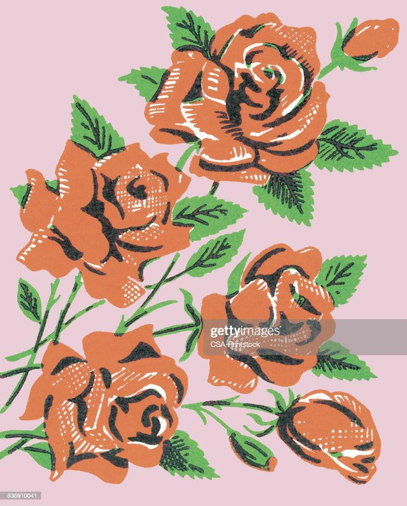 Red rosas : Ilustración de stock