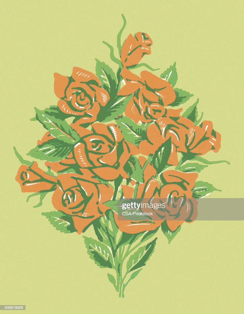 Red Roses : Stock Illustration