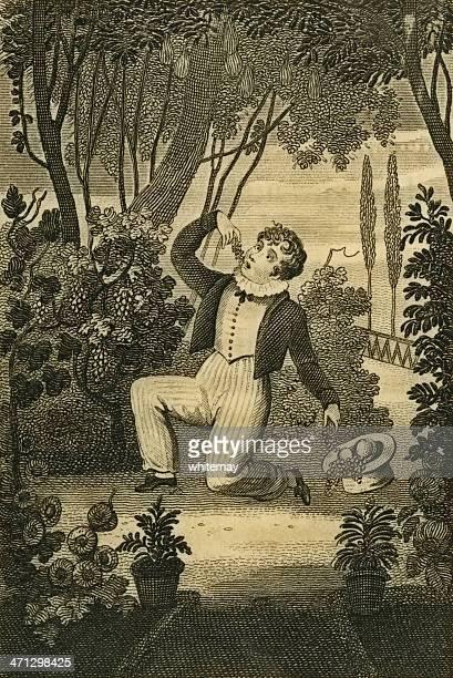 ilustraciones, imágenes clip art, dibujos animados e iconos de stock de regency era niño gorging el robo de frutas (c1830 grabado - bulimia
