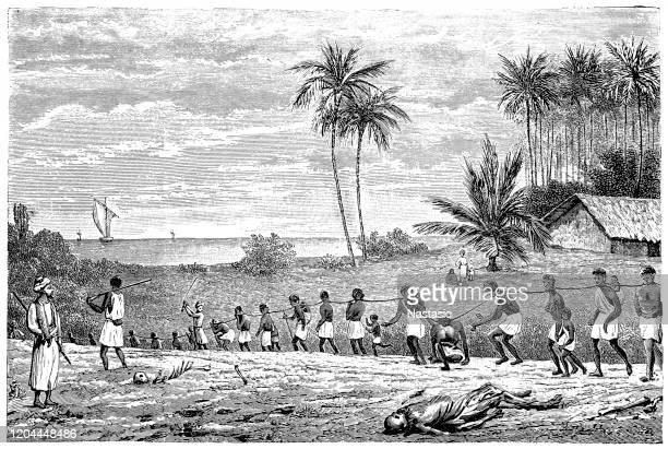 illustrations, cliparts, dessins animés et icônes de région du congo : transport d'esclaves nègres - image du xixème siècle
