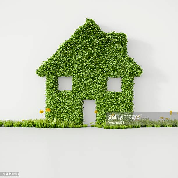 3D Rendering, House from grass on wall, copy space