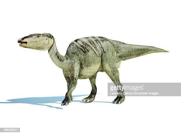 3d rendering of an edmontosaurus dinosaur. - hadrosaurid stock illustrations, clip art, cartoons, & icons