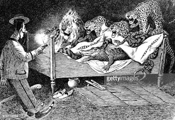 ilustrações, clipart, desenhos animados e ícones de retornar o homem vê animais selvagens na cama dele - réptil