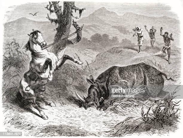 Rhinoceros hunt in Africa