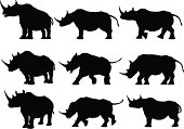 Rhinoceros Silhouettes