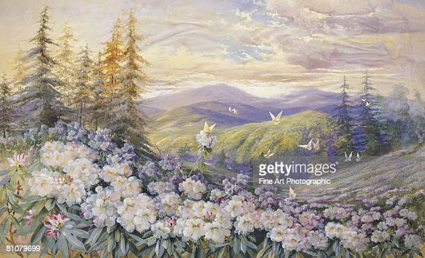 rhododendrons and butterflies - horizontal stock illustrations