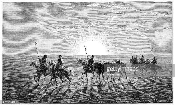 ilustraciones, imágenes clip art, dibujos animados e iconos de stock de riders en el desierto de gobi, asia - mula