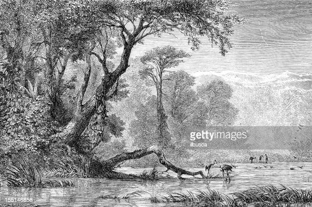 river in south russia - engraved image stock illustrations
