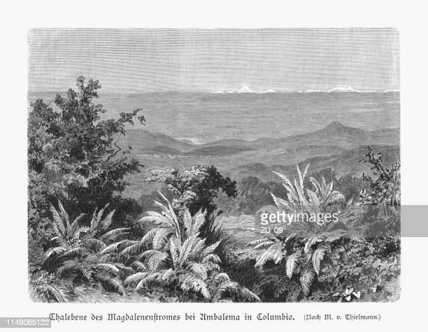 ilustraciones, imágenes clip art, dibujos animados e iconos de stock de valle de río magdalena cerca de ambalema, colombia, grabado en madera, publicado 1897 - colombia