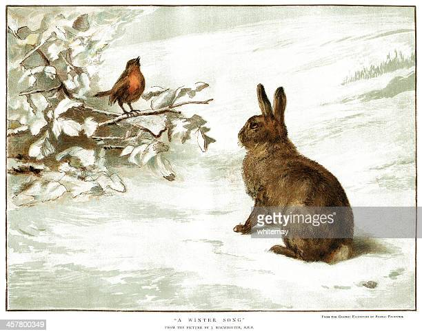 robin and rabbit in the snow - rabbit animal stock illustrations, clip art, cartoons, & icons