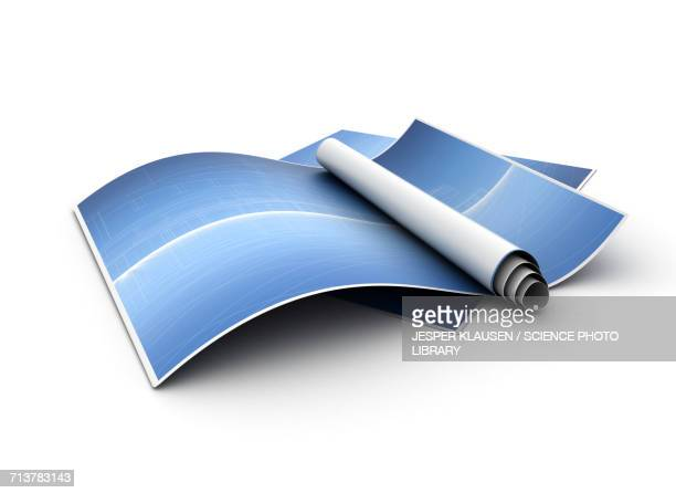 rolled up paper - paperwork stock illustrations