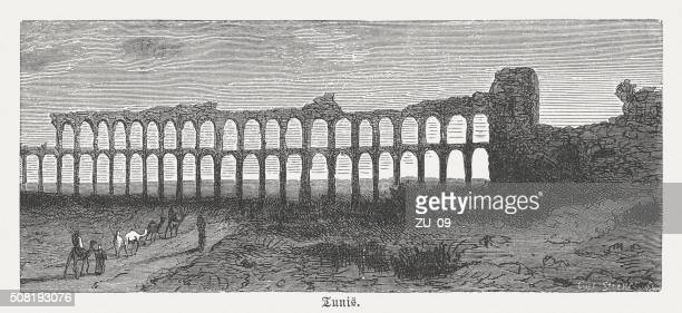 Roman aqueduct near Tunis, wood engraving, published in 1882